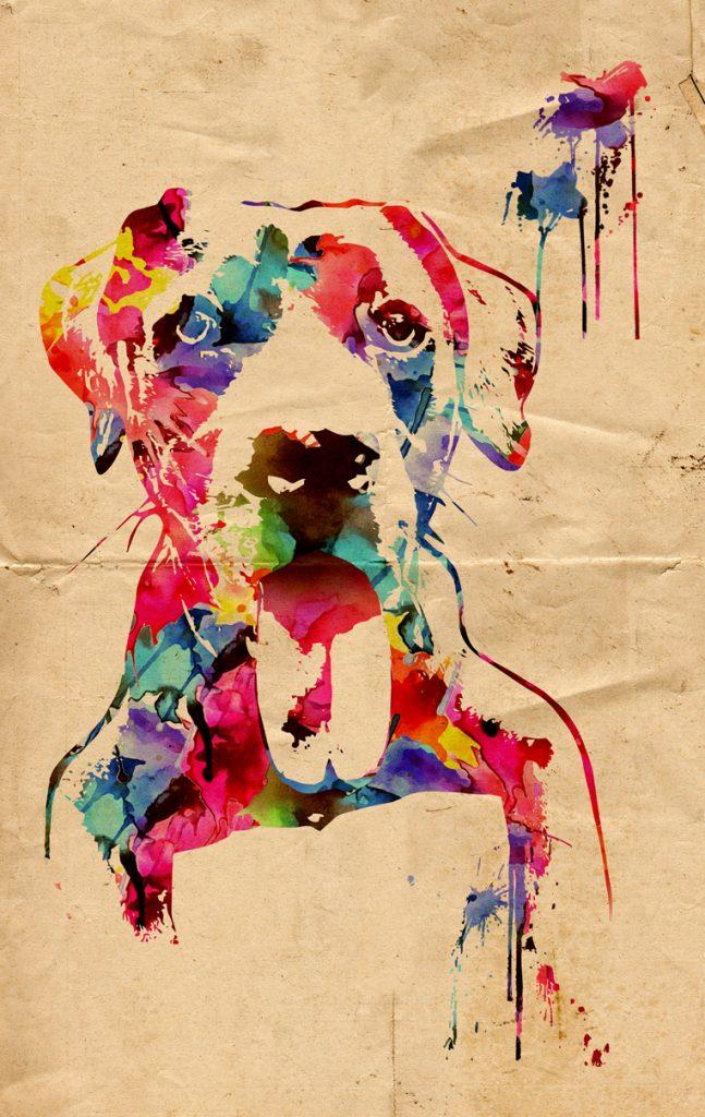 ritratti cani