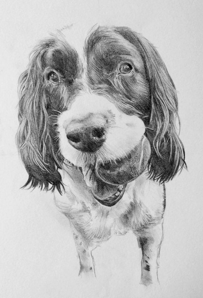 ritratto a matita cane